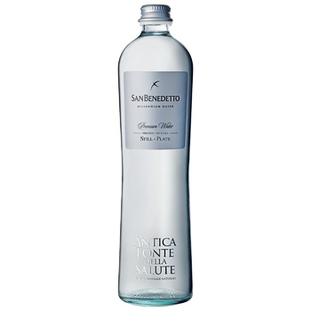 San Benedetto Non-carbonated Mineral Water 0,65l - buy, prices for CityMarket - photo 1