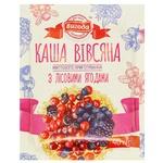 Vygoda Instant Oatmeal Porridge with Wild Berries 40g