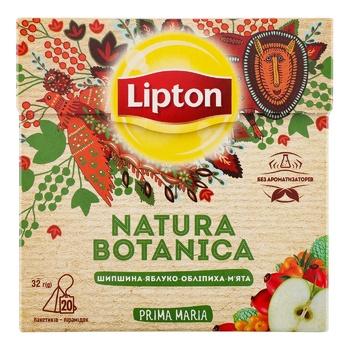 Смесь плодово-ягодная Lipton Natura Botanica шиповник-яблоко-облепиха-мята 20шт*1.6г