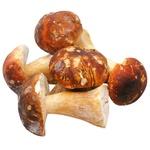 Mushrooms penny bun Without brand whole Ukraine
