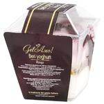 Gel Amo Yogurt Ice Cream 150g