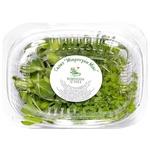 Мікрогрін Ігуана Мікрозелень Greeny мікс 50г