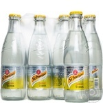 Schweppes Indian Tonic carbonated beverage 250ml