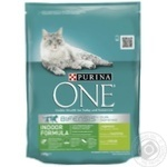 Purina One Turkey Dry For Cats Food