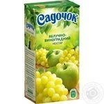 Sadochok Apple-grape Nectar 0,5l
