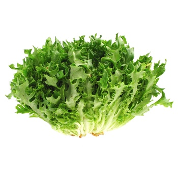 Frize Lettuce Salad - buy, prices for Auchan - photo 1