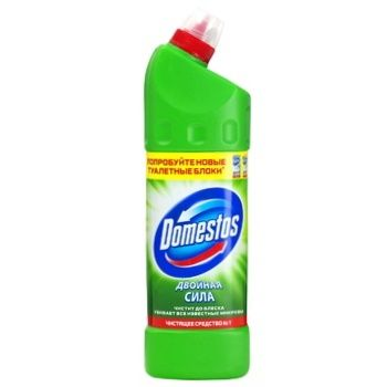 Domestos Disinfectant Coniferous Freshness 500ml - buy, prices for Novus - image 1