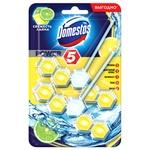 Domestos Power 5 Freshness of Lime Block for Toilet Bowl 2pcs*55g