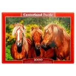 Castorland Animals Puzzles 1000 Elements