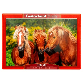 Castorland Animals Puzzles 1000 Elements - buy, prices for Tavria V - image 1