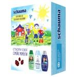 Подарочный набор Schauma Семейные ценности Шампунь 3х250мл
