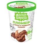 Морозиво Белая Бяроза пломбір з какао та згущеним молоком 555г
