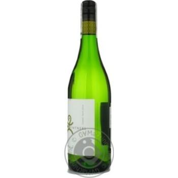 Man Chenin Blanc White Dry Wine 0.75l - buy, prices for Furshet - image 2