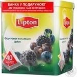 Tea Lipton Fruit collection 72g can Russia