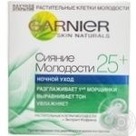 Product Garnier Skin naturals for face 50ml