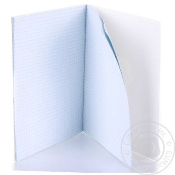 Shkolyaryk Checkered Notebook 12 sheets - buy, prices for Auchan - photo 4
