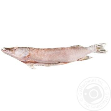 Pike gutted fresh frozen weight - buy, prices for Auchan - photo 1