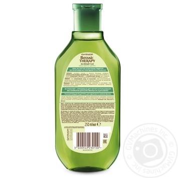 Shampoo Garnier with eucalyptus for hair 250ml - buy, prices for Novus - image 2