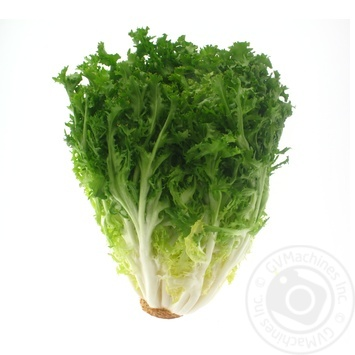 Frize Lettuce Salad - buy, prices for Auchan - photo 4