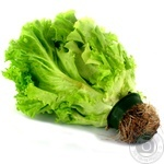 Lettuce, 1 Bunch