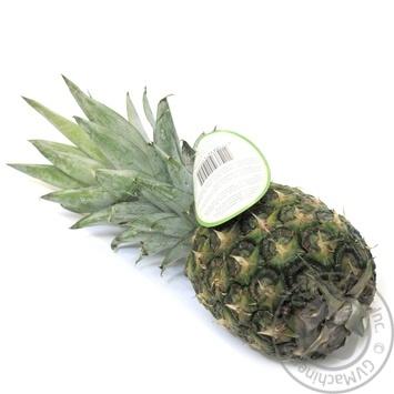 Pineapple B10 (1101-1300g) - buy, prices for Novus - image 2