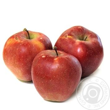 Яблоко Чемпион диаметр 75+