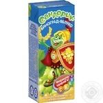 Sandoryk grape-apple nectar 200ml