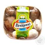 Сup mushrooms Ukrainski Pecherytsi Duet 500g Ukraine