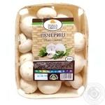 Persha Khvylia Champignon Mushrooms, 1 Box