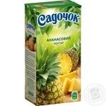 Нектар Садочок ананасовий неосвітлений пастеризований тетрапакет 500мл Україна