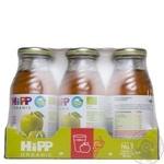 Сок Hipp яблучно-виноградный 8030 200мл