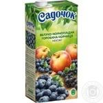 Нектар Садочок яблоко-черноплодная рябина-черника 0,95л