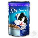 Корм Felix Fantastic С ягненком в желе для взрослых котов 100г - купить, цены на Восторг - фото 1