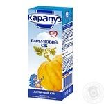 Sterilized homogenized pumpkin juice Karapuz for 4+ months babies 200ml