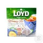 Чай фруктово-трав'яний з імбиром й корицею  та з ароматом сливи та інжиру  у пакетиках для разового заварювання Loyd 20*2г