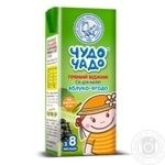 Chudo-Chado not from concentrate apple-berry juice for babies 8 months and older 200ml