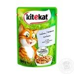 Kitekat food for cats with veal in sauce 100g - buy, prices for Tavria V - image 1