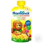 Hamanek apple-mango for children from 4 months puree 120g