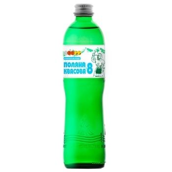 Poliana Кvasova -8 Mineral Carbonated Water 0,5l - buy, prices for CityMarket - photo 1