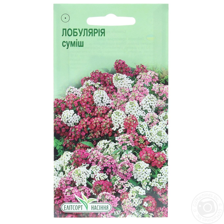 Насіння Квіти Лобулярія суміш Елітсортнасіння 0 516312e8b9806