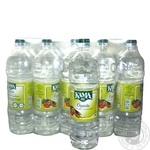 Vinegar Kama