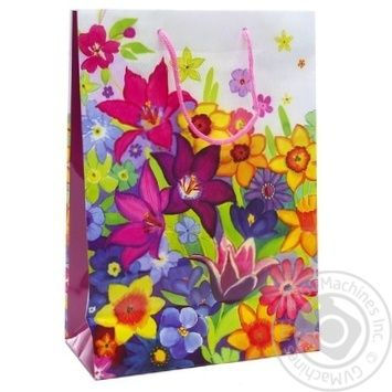 Gift Package 26х32cm in Assortment - buy, prices for Auchan - photo 3