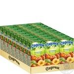 Сік Садочок персиковий 0,5л - купити, ціни на МегаМаркет - фото 3