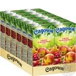 Морс Садочок Яблуко та журавлина 0,95л - купити, ціни на Ашан - фото 3
