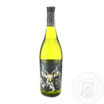 Вино Heart of Africa Chenin Blanc біле сухе 13% 0,75л - купити, ціни на CітіМаркет - фото 1