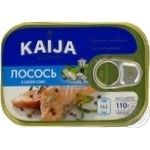 Fish salmon Kaija canned 110g can