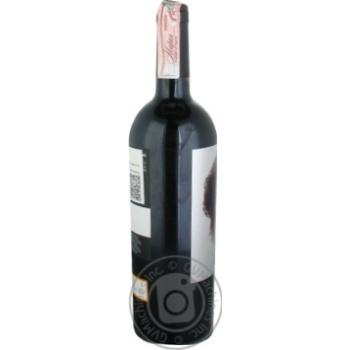 Вино Ego Bodegas Goru красное сухое 14% 0,75л - купить, цены на МегаМаркет - фото 5