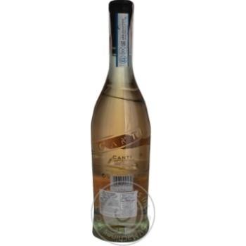 Canti Pinot Grigio Delle Pink Semi Dry Wine 12% 0.75l - buy, prices for CityMarket - photo 2