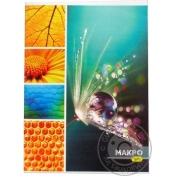 Arkush Notebook A4 94 sheets - buy, prices for Auchan - photo 1