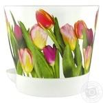 Кашпо Idea Ніка польові тюльпани 12cм 0,8л